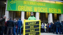 Greenpeace fordert verpflichtende staatliche Fleisch-Kennzeichnung