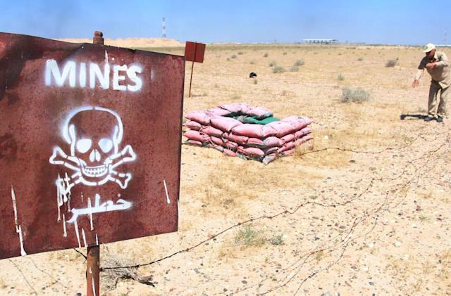 Researchers are breeding fluorescent bacteria to uncover landmines