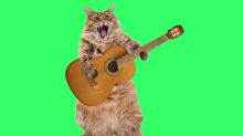 From cat videos to karaoke, I've decided to embrace silliness