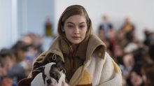Live Puppies Were the Real Stars of Tod's Fall 2018 Collection