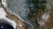 """Amazonas: no se está quemando el """"pulmón del planeta""""... es aún peor"""