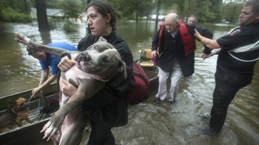 At least 2 dead, 1,000 rescued in Texas floods