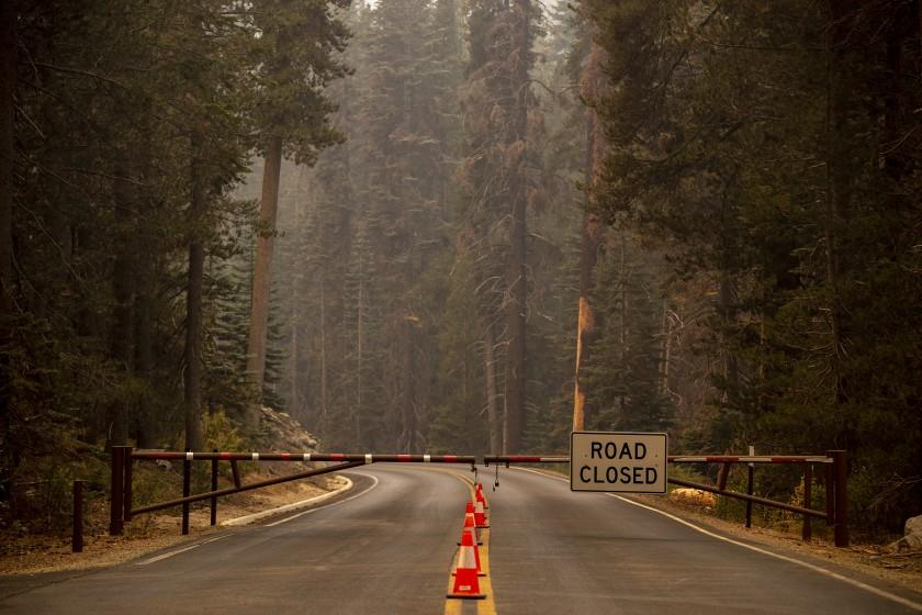 Wildfire reaches Giant Forest; fate of giant sequoias unknown