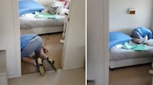'He is a big boy!' Hungry intruder found under child's bed