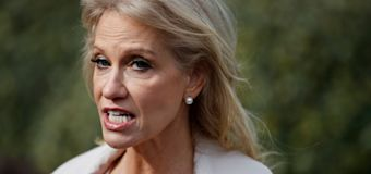 Conway blasted for N.Z. manifesto suggestion