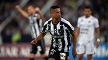Botafogo vai cortar jogadores para aliviar folha salarial