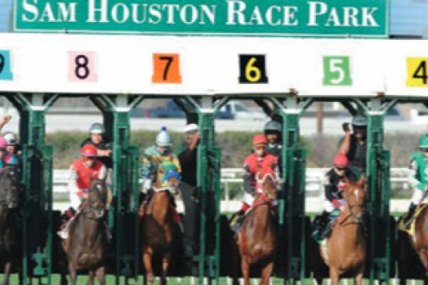 Horse betting online texas usa vs honduras betting preview