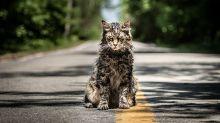Muere el gato protagonista de Cementerio de animales