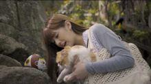 日本這個城市之中貓不是貓 貓是神!