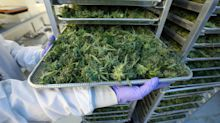HEXO's pot strategy is to focus on Canada - and it's working