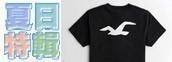 HCO海鷗短袖T恤