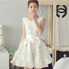 無袖洋裝歐根紗連身裙