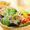 *提供超強飽足感,高鈣、低糖、低脂、不含麩質,有效降低澱粉攝取量,並均衡營養。