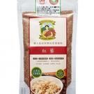 有穀類紅寶石的尊稱,是現代健康食品的極佳原料!