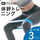 天然乳膠環保安全 強韌抗斷裂具高回彈高強拉伸特性 3條入具高中低等三種阻力 運用於手臂、臀、腿等訓練