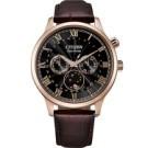 原廠公司貨 藍寶石水晶鏡面 不鏽鋼錶殼,皮革錶帶 月相、星日期、月份顯示 型號:AP1059-19E