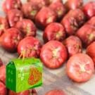 ★果形完整新鮮亮麗 ★每粒果重85~100g ★糖度10度以上 ★佳冬鄉農會品質保證