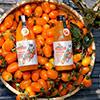 鮮採好滋味、活力好氣色無防腐劑、香料色素、化學添加物高雄美濃在地生產橙蜜香小蕃茄原汁高達60%