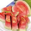 含維生素C 養顏美容含人體無法製造的茄紅素豐富纖維質可幫助消化