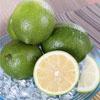 盛產期的檸檬又香又多汁營養價值高,是水果也是蔬菜搭配茶飲、甜品或料理皆美味