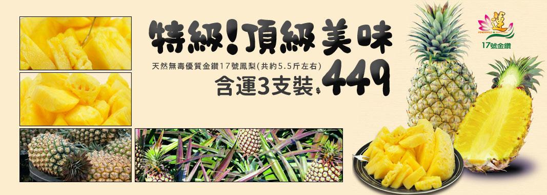 特級!天然無毒優質金鑚17號鳳梨(3支裝