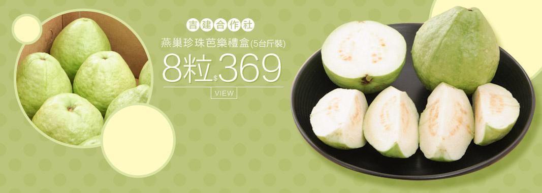 燕巢 珍珠芭樂禮盒/5台斤裝含運369元