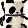 可愛的貓熊在竹林間追逐嬉戲真可愛!忽然間展開變成了一張毛毯~