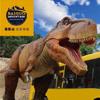 結合恐龍主題樂園,虛擬實境VR體驗館,親子餐廳,親子互動遊樂區,希望為您創造美好親子共遊的回憶!