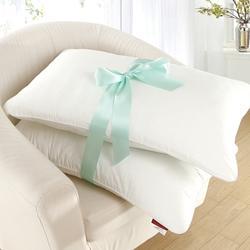 贈品-GOLDEN-TIME-抗菌鋪棉壓縮枕x2