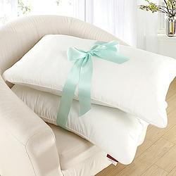 (贈品)GOLDEN TIME-抗菌鋪棉壓縮枕/2入