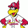 *St. Louis Cardinals™ 11/11! Nets!