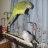 jen's3littlebirds