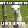 AlfaLeon