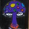 The Damn Mushroom