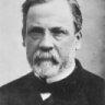 Ivanovitch