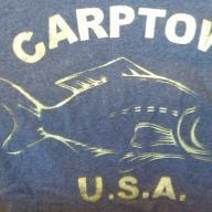 Flying Asian Carp