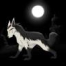 Lobo da noite