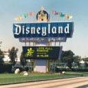 Disneyland Guru