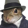 Scooter_The_Squirrel_Agent