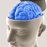 Cerebro que funciona  diferente.