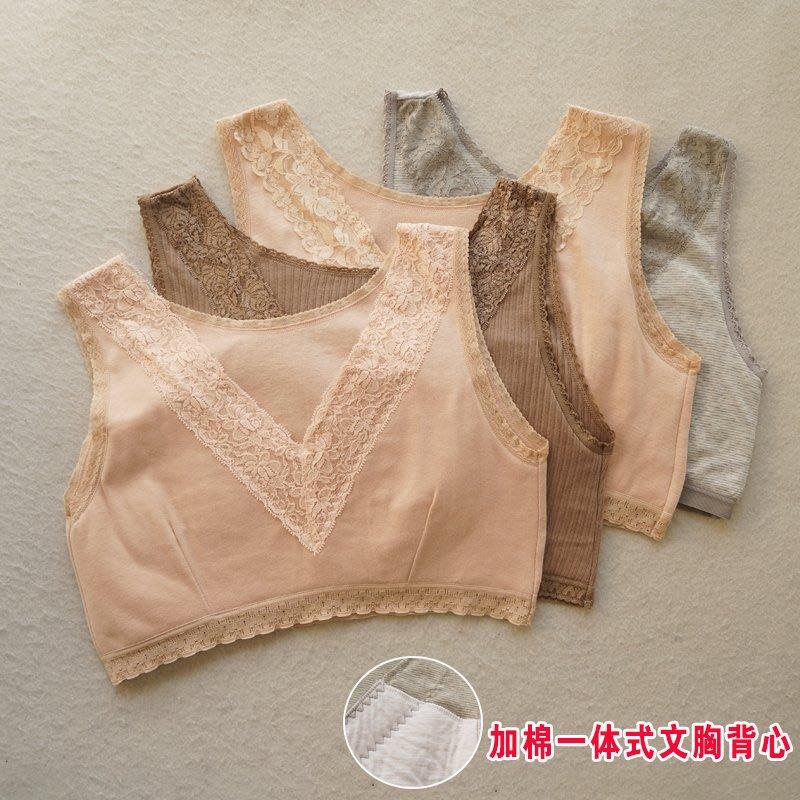 日本夏季內衣 棉質胸墊 無鋼圈內衣 V領蕾絲 日本夏季無鋼圈內衣胸罩 無痕