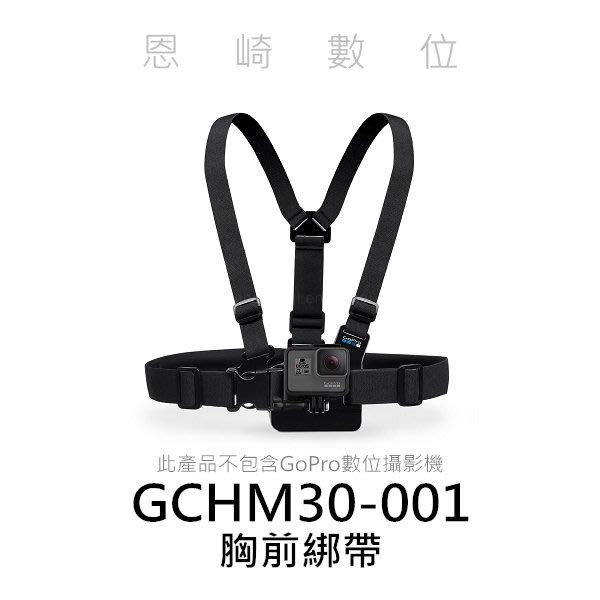 恩崎科技 GoPro 胸前綁帶 GCHM30-001 適用 HERO5 HERO6 BLACK 台閔科技公司貨