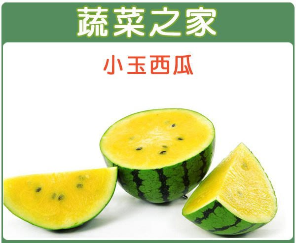 【蔬菜之家】I02.小玉西瓜種子3顆(新冠品種.皮色綠色底子青黑色條斑,肉色晶黃,品質極佳.蔬菜種子)