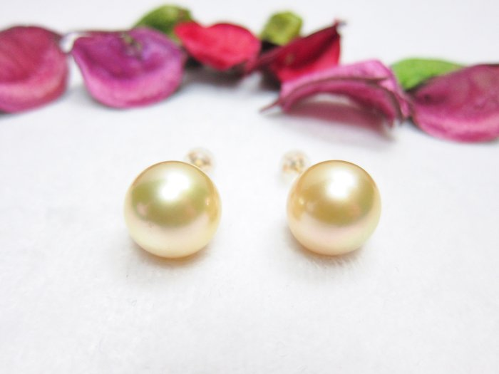 13.7mm南洋黃金珍珠18K耳環【元圓珠寶】
