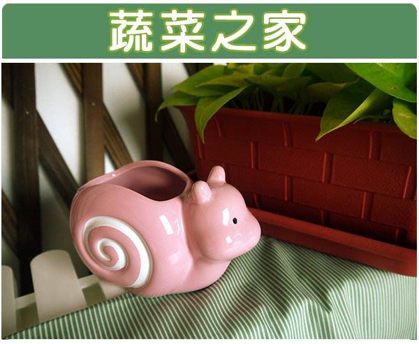 全館滿799免運【蔬菜之家004-G03PI】陶瓷蝸牛瑞士捲-粉紅色※此商品運費適用宅配※
