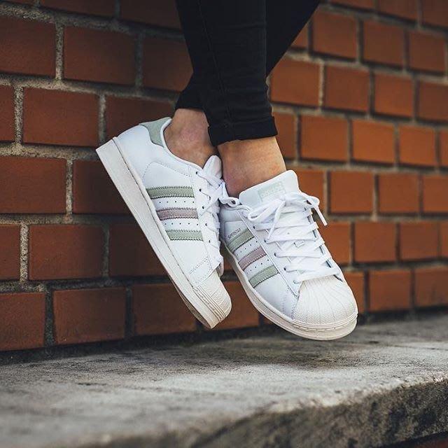 Adidas Superstar W 櫻花粉 貝殼頭 麂皮 白色 皮革 粉綠 奶油底 金標 粉色 BB2142女滑板鞋