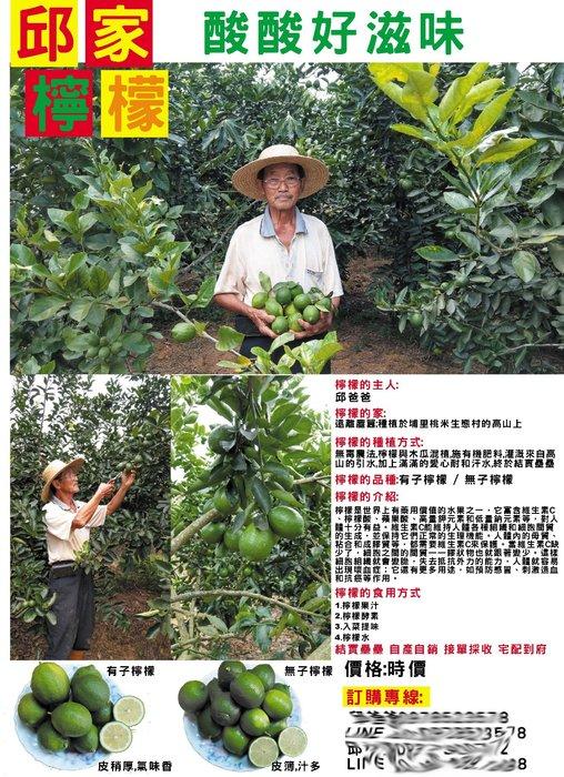 邱爸爸自然農法-無毒檸檬之無子檸檬-可作檸檬汁蜂蜜檸檬水檸檬酵素入菜用