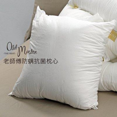 【精選老師傅手工】防螨抗菌抱枕類-大抱枕(53x53)(一入)-2入免運