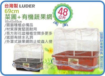 =海神坊=台灣製 LUDER 69cm 菜圃+有機蔬果網 方形花器 菜盆 菜園 花槽 花盆 栽培 塑膠盆48L 2入免運