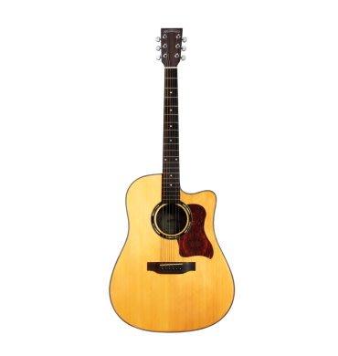 【金聲樂器】Woodtone-D40C 面單板 (附原廠琴袋)